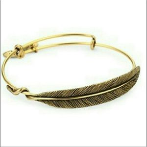 Feather bangle endless